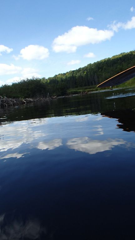 First paddle strokes on the Tim River